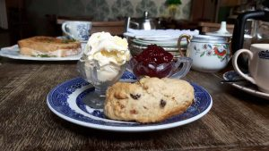 My cream tea - if the scone looks generous, that's an optical illusion. For scale, the pots for cream and jam are antique 'salts' so small egg cup size